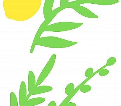 Sukkot Shleimut with Wholeness and Peacefulness